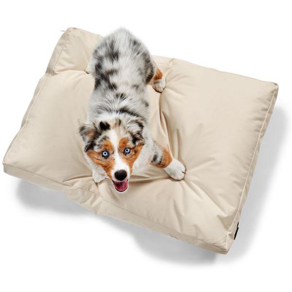 Hundekissen Gent Antibakteriell