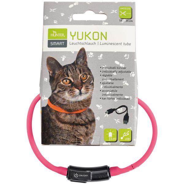 LED Silikon Leuchtschlauch Yukon für Katzen