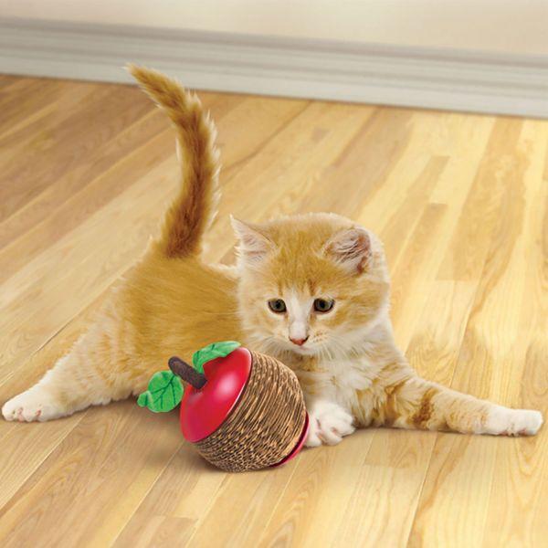 Cat toy Kong® Scratch Apple