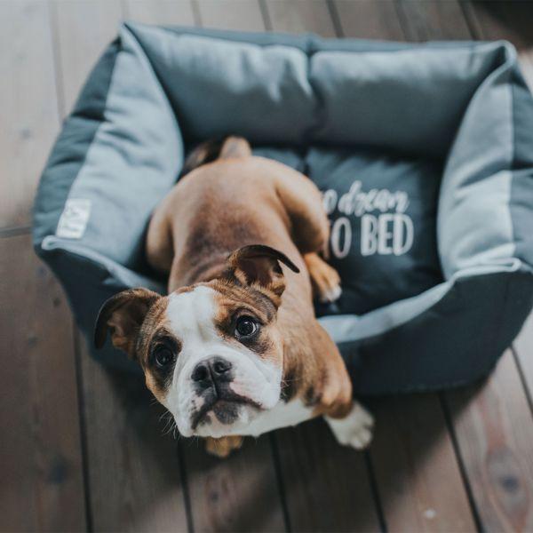 Hundesofa Keitum