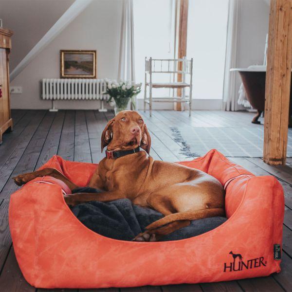 Hundesofa Göteborg