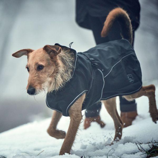 Hundemantel Uppsala Softshell