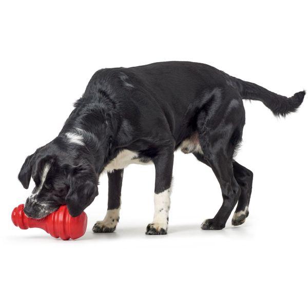 Hundespielzeug Tegi