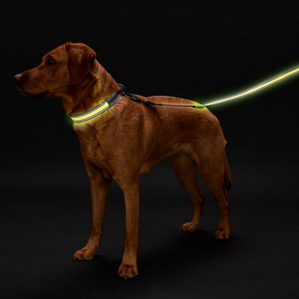 LED Leuchthalsung Manoa Glow