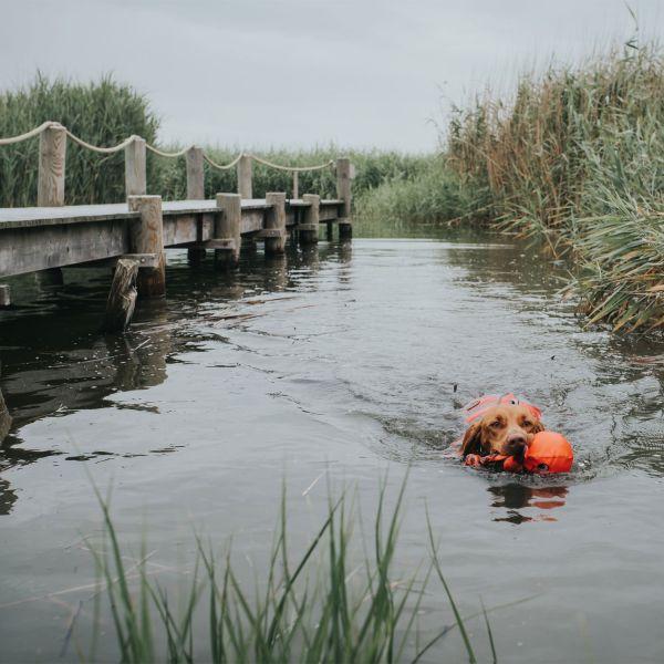 Schwimmweste Moss