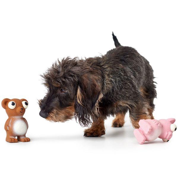 Dog toy Auckland