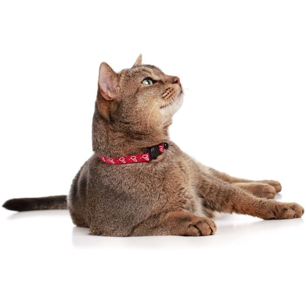 Cat collar »by Laura«