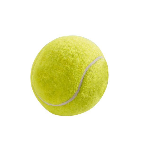 Hundespielzeug Tennisball