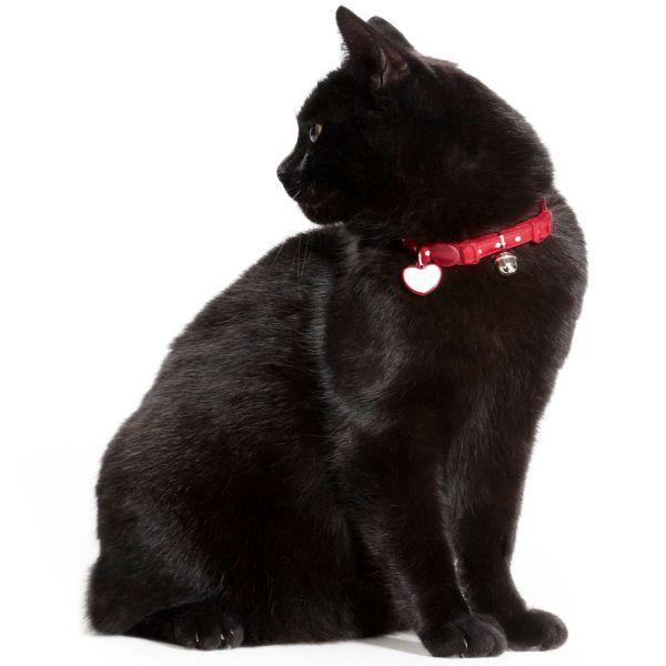 Katzenhalsband Glossy Dots