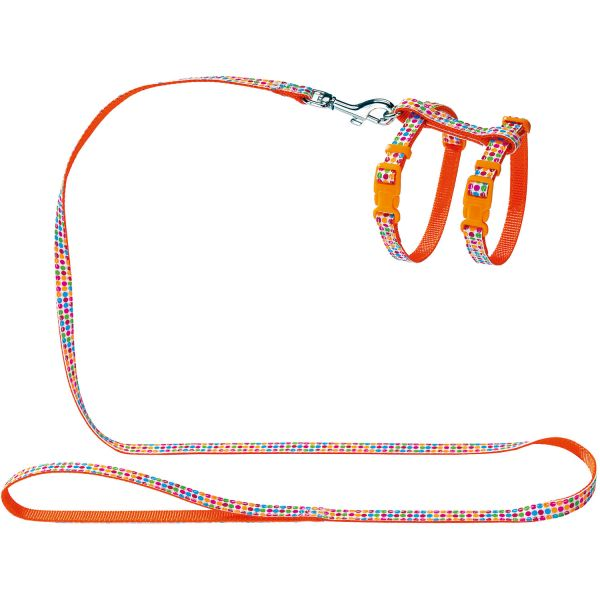Puppy & cat harness and leash set