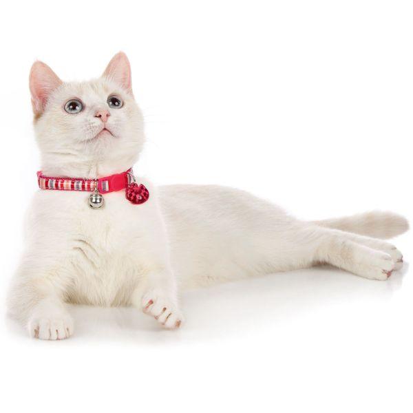 Katzenhalsband Glossy Stripes