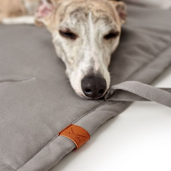 Hundedecke Sansibar Rantum