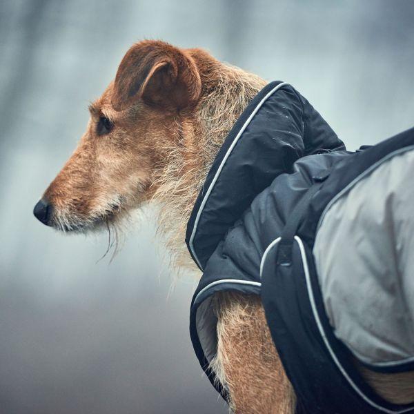 Hundemantel Uppsala Extreme
