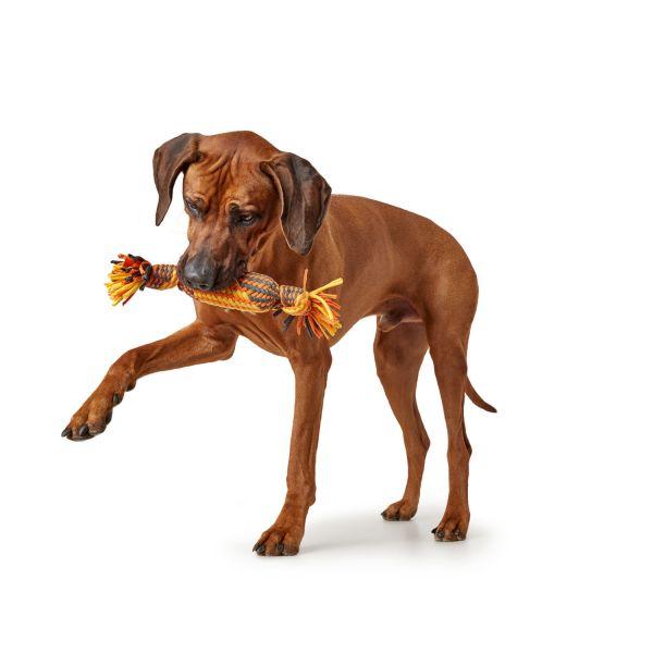 Hundespielzeug Filey