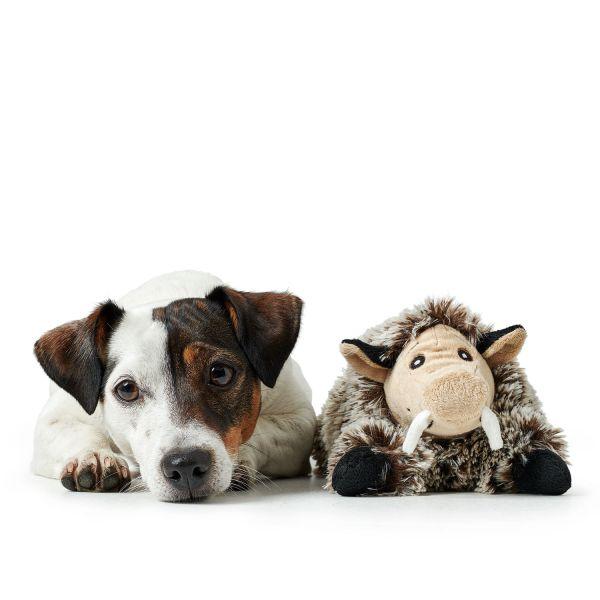 Hundespielzeug Faro