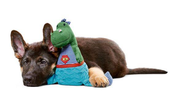 Hundespielzeug Kigoma