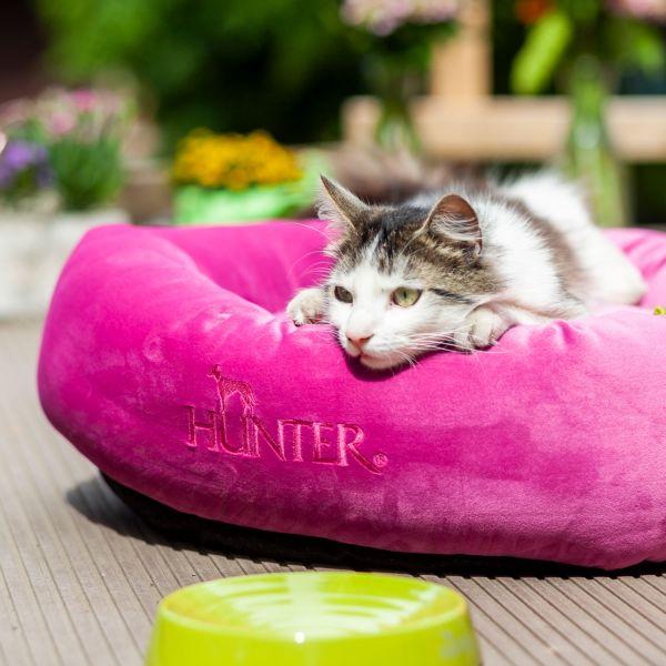 Katzen- und Welpendonut »by Laura«