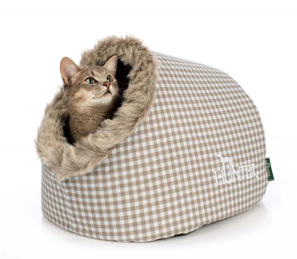 Katzenhöhle Astana