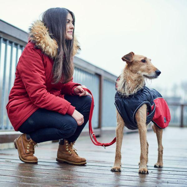 Hundemantel Uppsala Cozy
