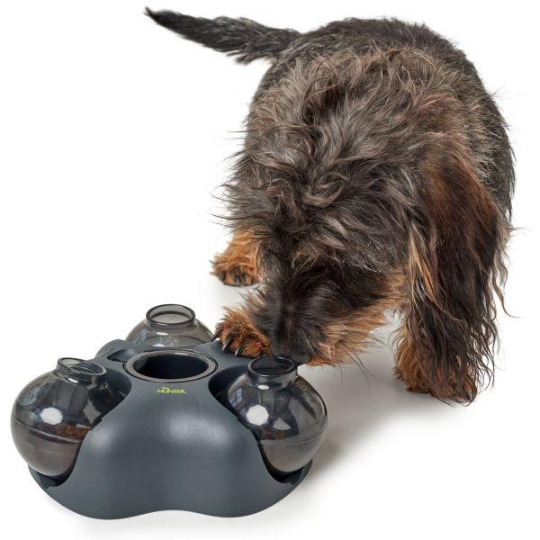 Hunde- und Katzenspielzeug Kem