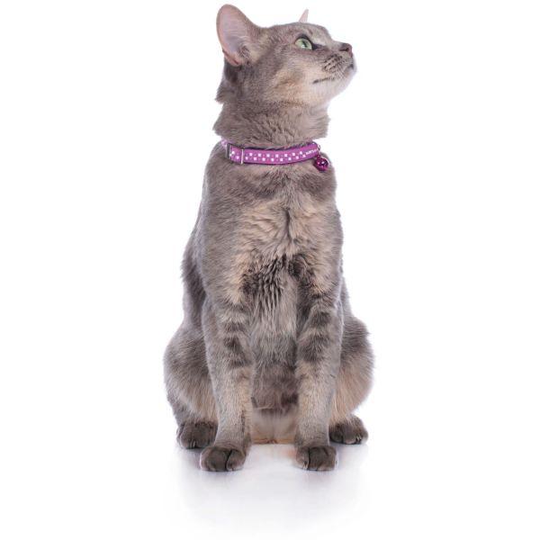 Cat collar Preston