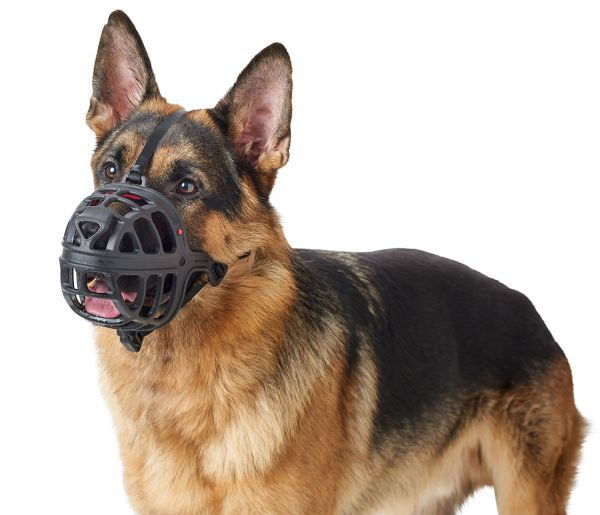 Muzzle Albury