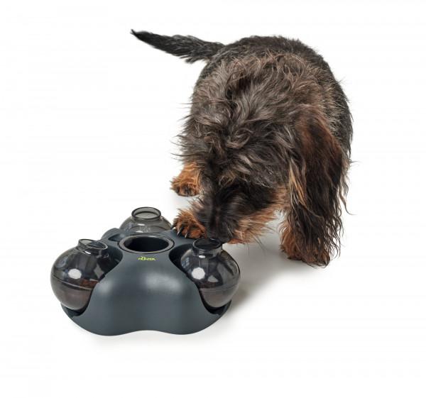 Hundespielzeug_KEM