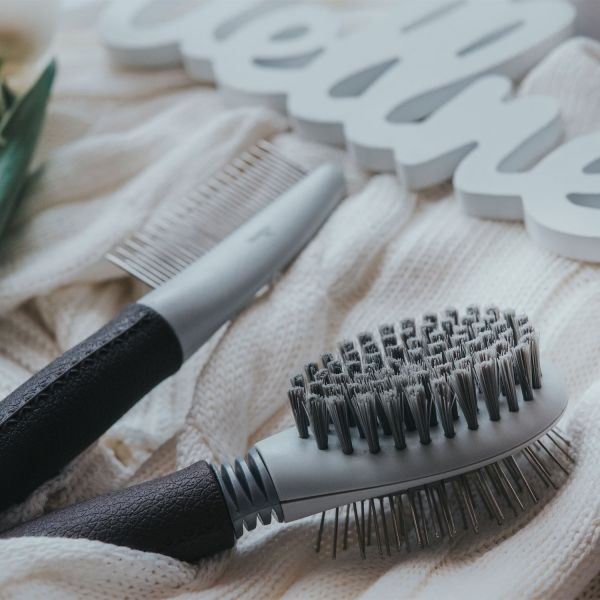 Multi-purpose brush Spa »Brushing and grooming«