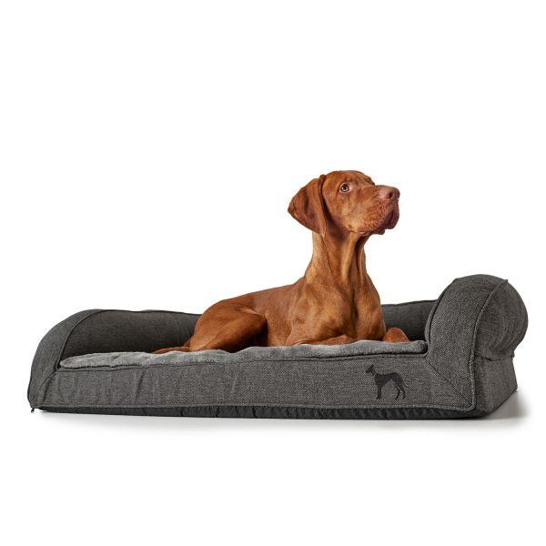 Orthopedic dog sofa Livingston
