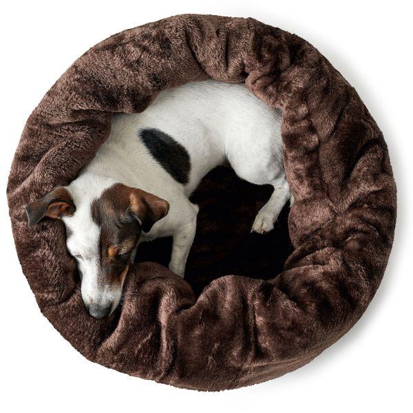 Hunde- und Katzenschlafplatz Livingston