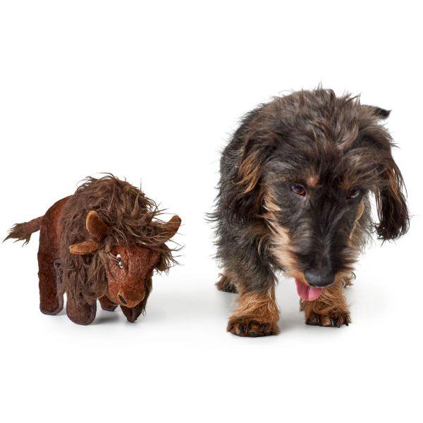 Hundespielzeug Tough Kamerun