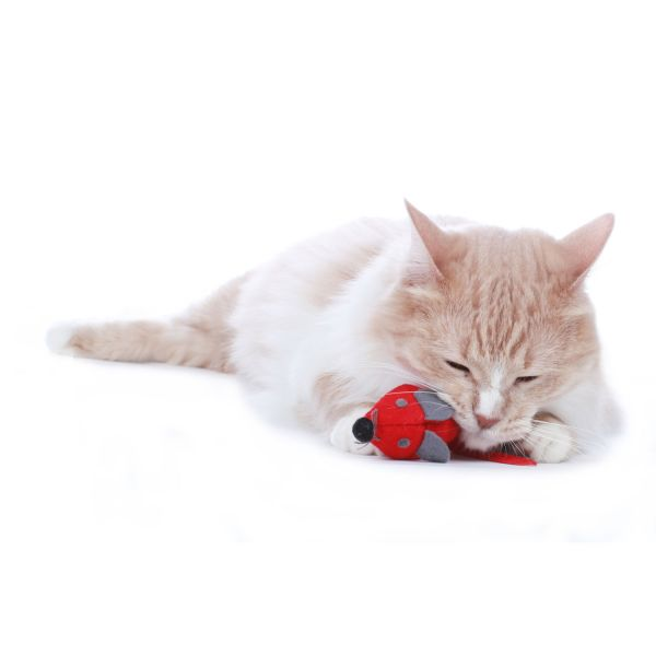 Cat toy »by Laura«
