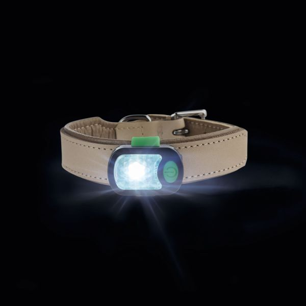 LED Anhänger Flashlight