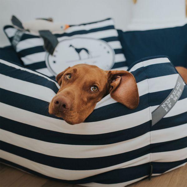 Hundesofa Binz
