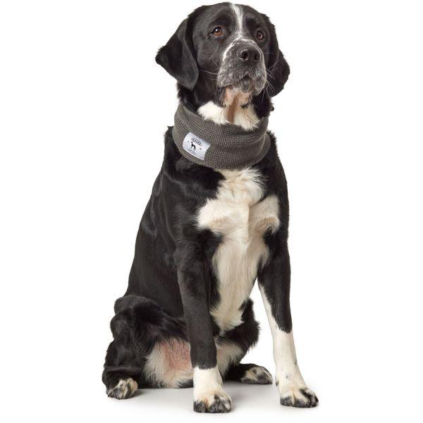 Hundeschal Nancy